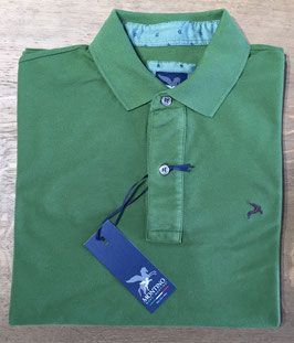 """MONTINO Polo """"Forrest-Green"""""""