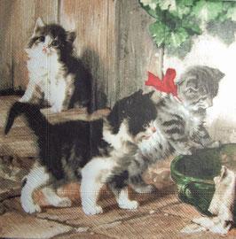 "Салфетка ""Милые котята"""