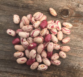 Italian Cranberry - Organic
