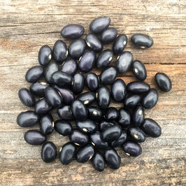 Black Coco Beans - Our Own