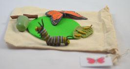 DIY-Kit: Lebenszyklus Schmetterling - BM 402