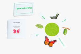 Lebenszyklus Schmetterling: Ein Schmetterlingsspiel - BM 109