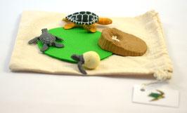 DIY-Kit: Lebenszyklus Meeresschildkröte - BM 403