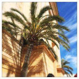 Mallorca im Quadrat 4