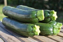 Zucchini (1 Stk.)