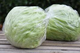 Eissalat (1 Stk.)