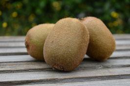 Kiwi (5 Stk.)