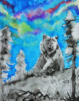 'Bear illustration print'