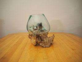 Wurzelholz mit 1 Glas  - W 19-2/6