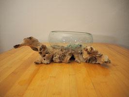 Wurzelholz mit 1 Glas  - W 19-13/13