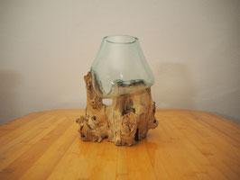Wurzelholz mit 1 Glas  - W 19-2/10