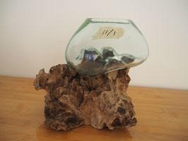 Wurzelholz mit 1 Glas  - W 11/1