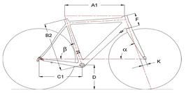 Standardgeometrie Race Fit