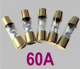 60A Glasrohrsicherung Typ AGU, 5er Set