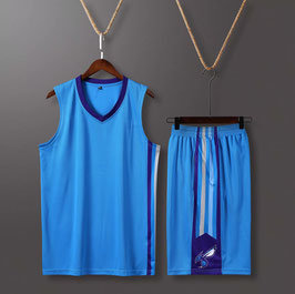 Charlotte Hornets Basketball Jersey Plain (available in kids sizes)