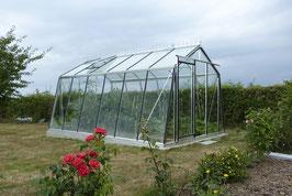 ACD Glas Gewächshaus S106H