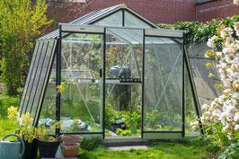ACD Glas Gewächshaus  S104H