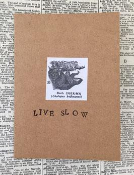 Live slow (77)
