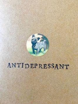 Antidepressant (10)