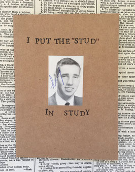I put the stud in study (62)