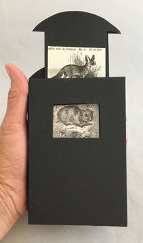 Artist Book:  Cute Denizons of the Woods
