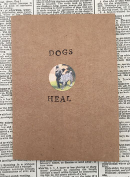 Dogs heal (42)