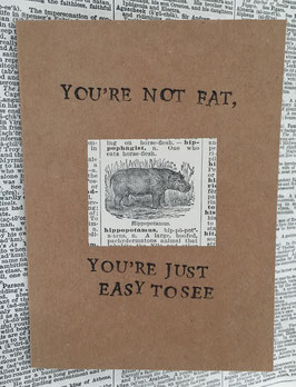 You'e not fat! (9)