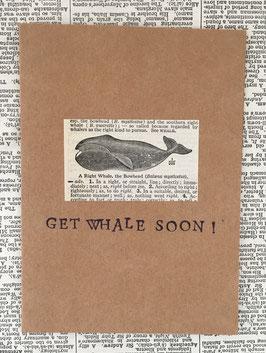 Get Whale Soon (36)