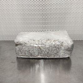 Pilzbrut Grain Spawn - 2 L im Mikrofilterbeutel