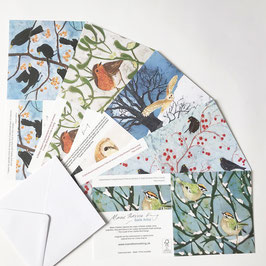 Winter Festival Multipack Bird Art Cards