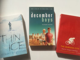 Stories-for-teenage-boys-bundle