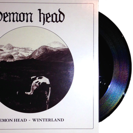 "DEMON HEAD - WINTERLAND (black 7"")"