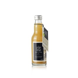 GAS GINGER ALE SYRUP 0.2l