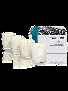 COWSHED WILD COW BELEBENDES KERZENSET