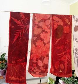 Stage Impressions botaniques sur fibres cellulosiques avec Beste Bonnard sur 2 jours