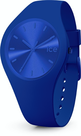 Icewatch 017906