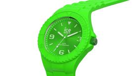 Icewatch 019160