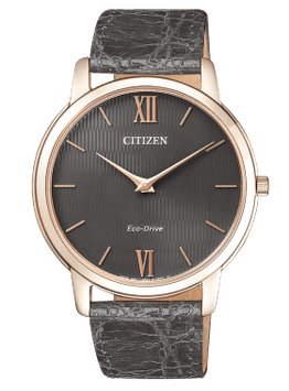 CITIZEN STILETTO AR1133-31H