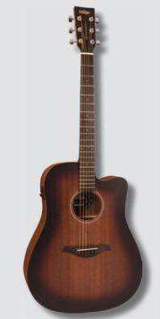 Chitarra acustica Vintage® VE440WK