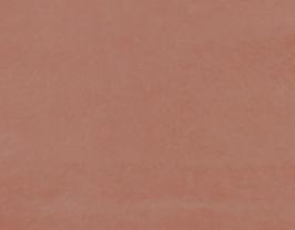 Morceau de cuir de chèvre chagrin rose saumoné