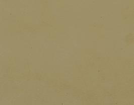 Coupon de cuir d'agneau velours beige
