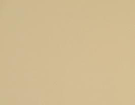 Morceau de cuir de vachette beige