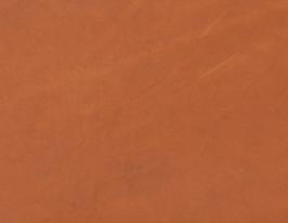 Coupon de cuir tannage végétal 4.4 mm