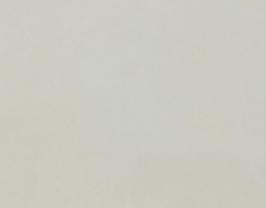 Morceau de cuir de baby veau velours ivoire