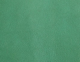 Coupon de cuir de chèvre vert clair métallisé
