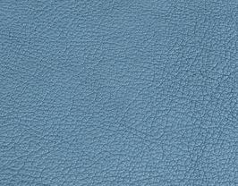 Coupon de cuir de chèvre bleu métallisé