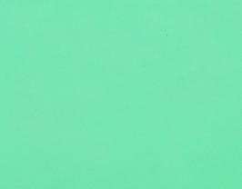 Coupon de cuir d'agneau nappa vert menthe à l'eau