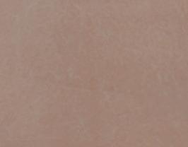 Morceau de cuir de chèvre chagrin sable