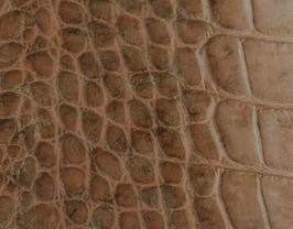 Coupon de cuir de veau beige et marron doré imprimé crocodile