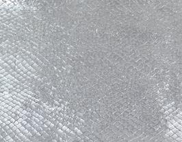 Coupon de cuir d'agneau argenté imprimé serpent